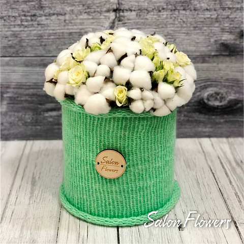 Cotton Box 6
